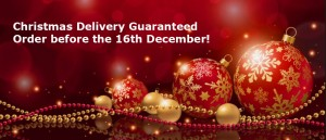 Christmas Delivery Times